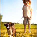Our Newest Member | Dog Photographer | Bergen County, NJ