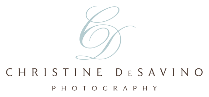 Elegant Child Photography | Christine DeSavino Portraiture | NJ, NYC, LBI | Newborn, Child, Teen, & Beach Photographer logo